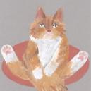 おっぴろげ猫 hisayo azuma