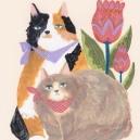 夫婦猫 hisayo azuma
