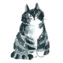 猫カットB アクリルガッシュ hisayo azuma